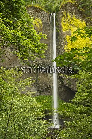 latourell falls columbia gorge oregon usa