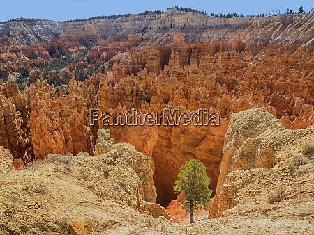 utah bryce canyon national park view