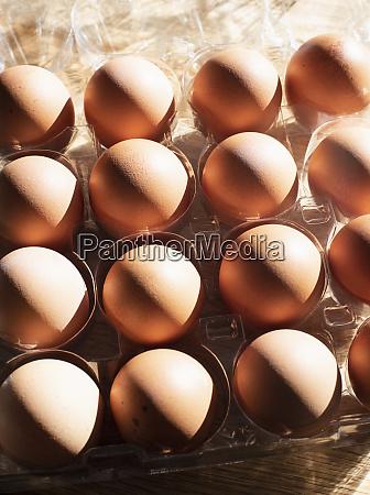 natura morta delle uova nel vassoio