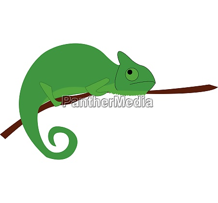 a big green color lizard with