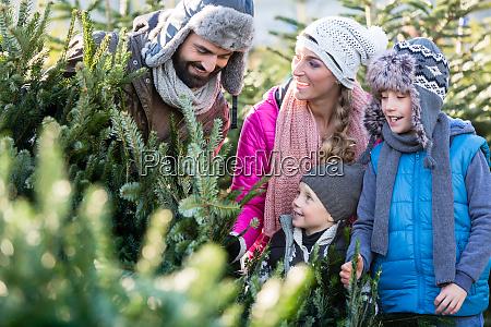 famiglia che compra albero di natale