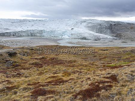 terminus of reindeer glacier landscape close