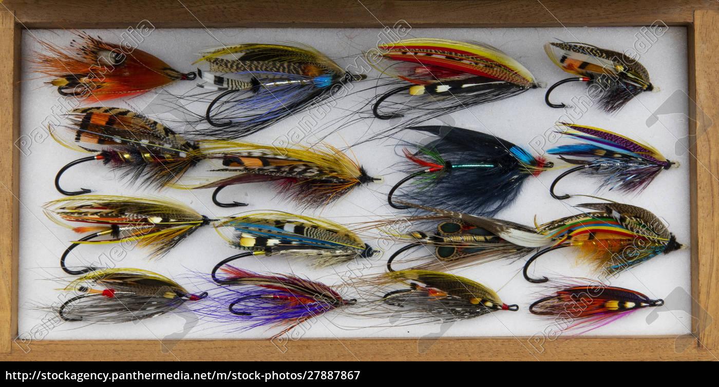 disegni, di, atlantic, salmon, fly - 27887867