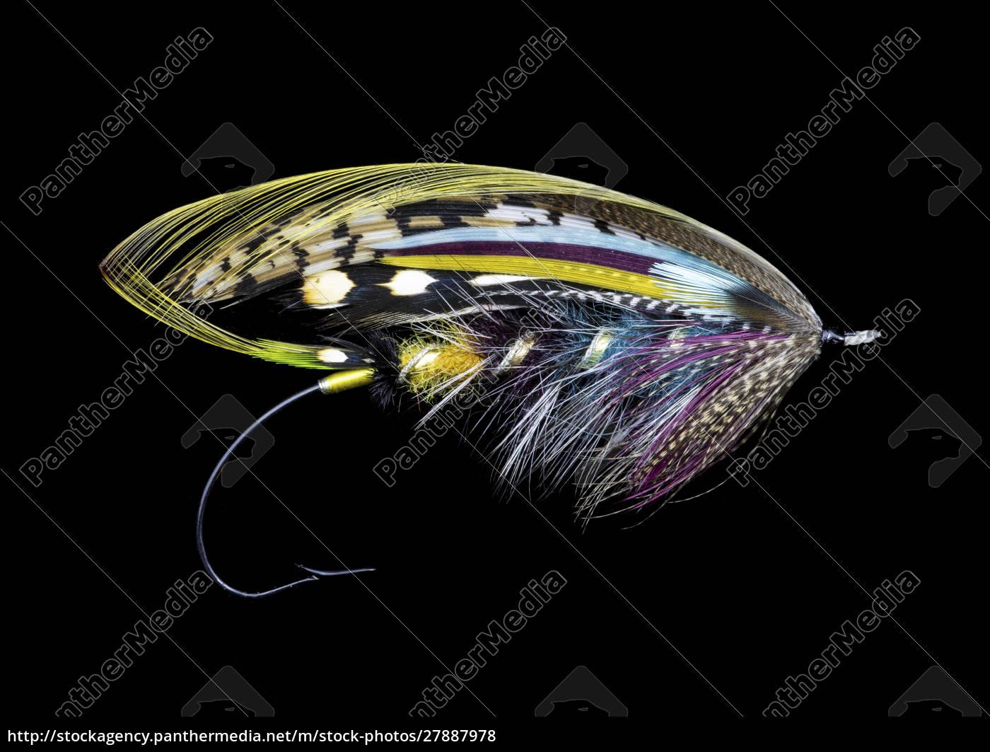 disegni, di, atlantic, salmon, fly - 27887978