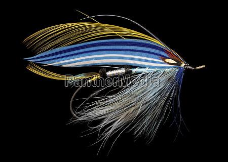 atlantic, salmon, fly, disegna, 'jill, susan' - 27888011