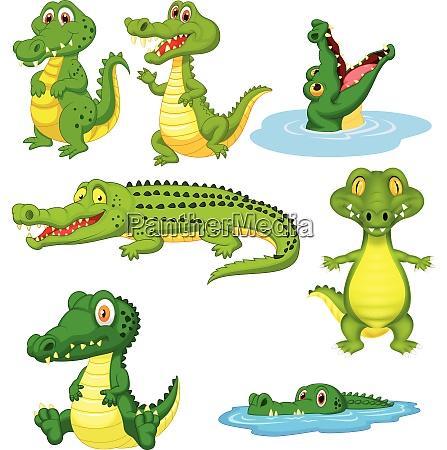 set collezione coccodrillo verde cartone animato