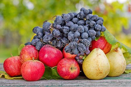frutta allaperto