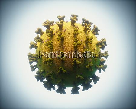 covid 19 virus infezioni da coronavirus