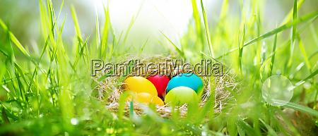 uova di pasqua in un prato