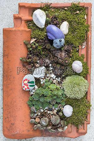 tegole piantate decorazione giardino