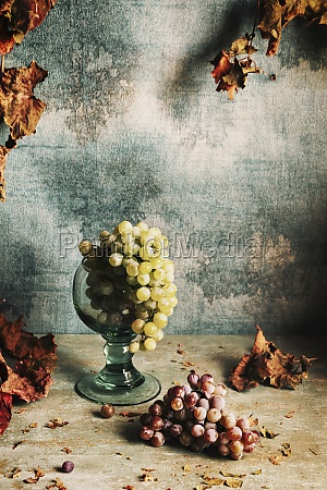 natura morta con uva e foglie