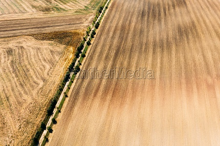 abstract, aerial, view, of, mowed, field - 30154895
