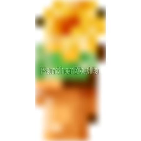ID immagine 30357716