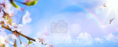 ID immagine B137407954