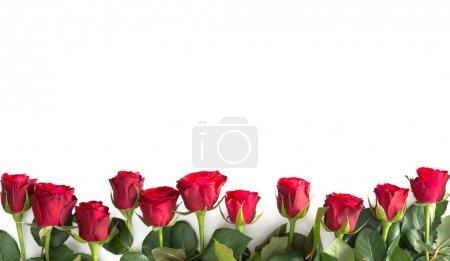 ID immagine B180656872