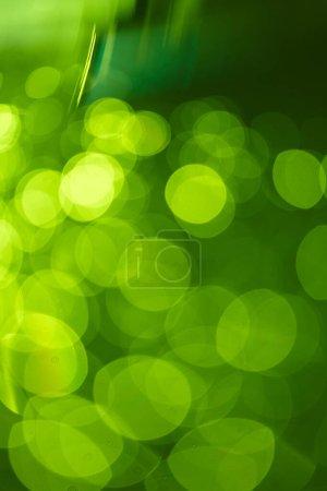 ID immagine B320309080