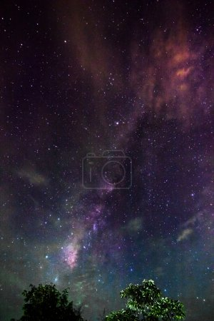ID immagine B51261975