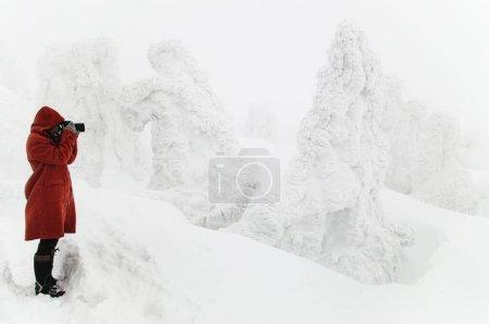 fotografia bella viaggi parco naturale montagna